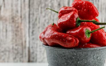 Invita habanero salsa.